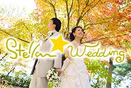 ステラウェディング<br>小さな結婚式