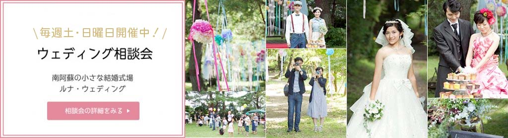 7_wedding_br